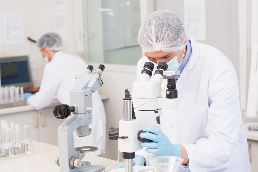 Scientists working attentively with microscopes in laboratory